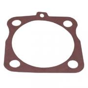 Bearing Cap Gasket - 211501315